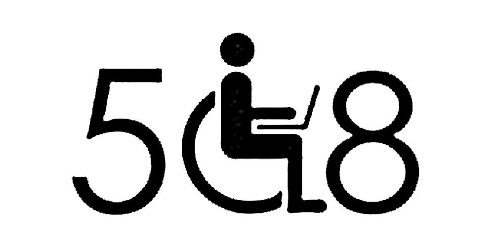 508 logo